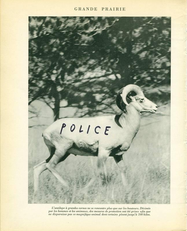 jeremiegrandsenne_police