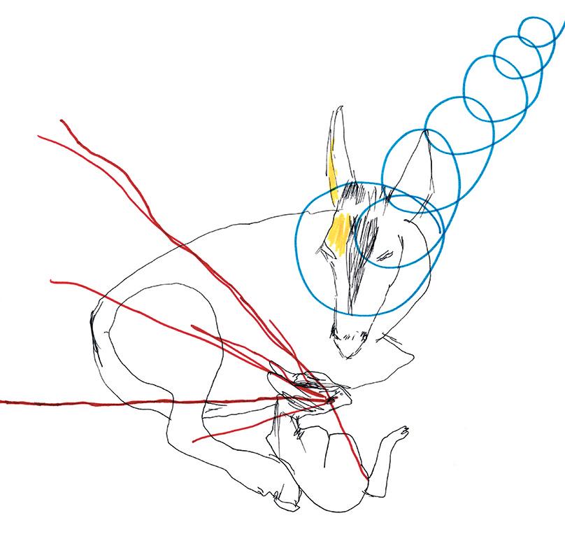 jeremiegrandsenne_cerf & biche laser entier