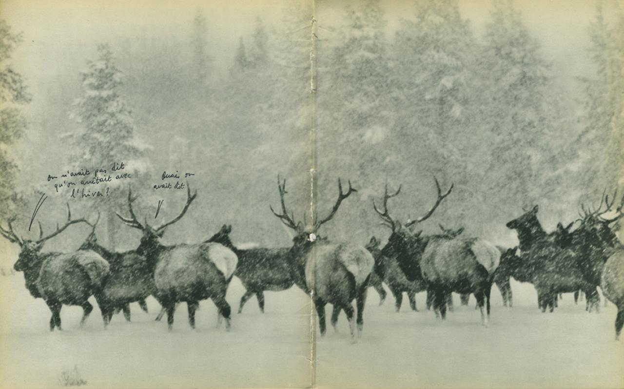 jeremiegrandsenne_hiver